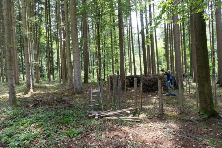 Waldsofa_bauen_16_Mai_2020-31