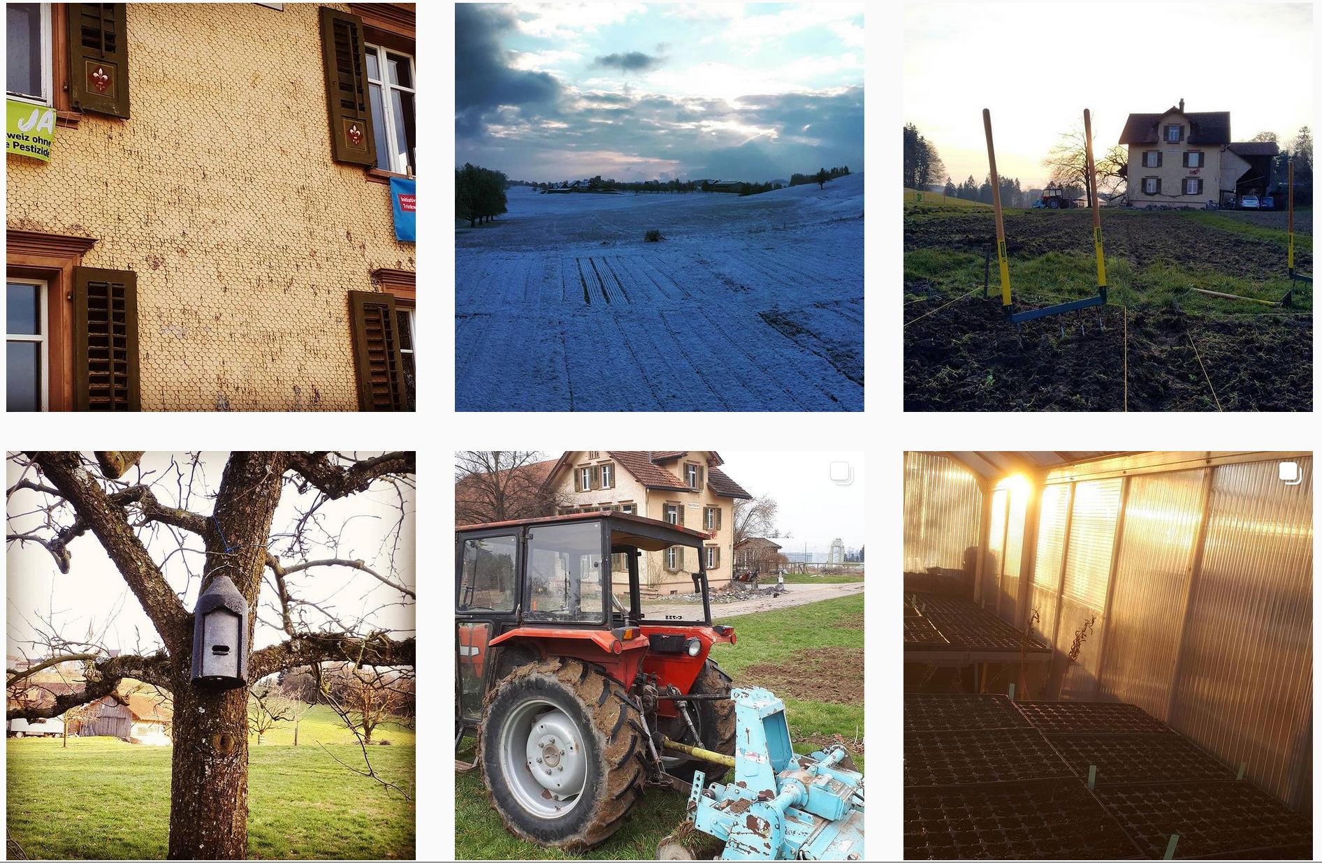 Der Kollektiv-Hof Waldheim auf Instagram